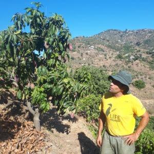 carlos manguier web